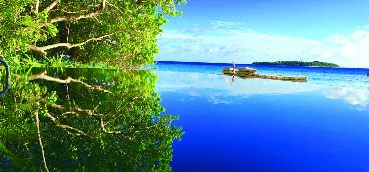dinero para viajar a maldivas